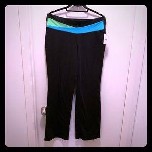 Lane Bryant Yoga Pants